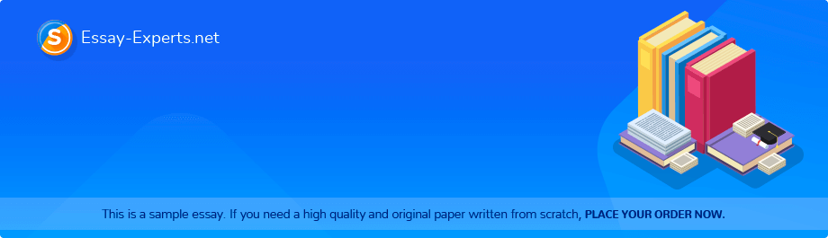 Free Essay Sample «Effects of the Civil War»